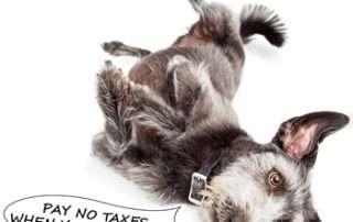 Pay No Taxes when You Rollover!
