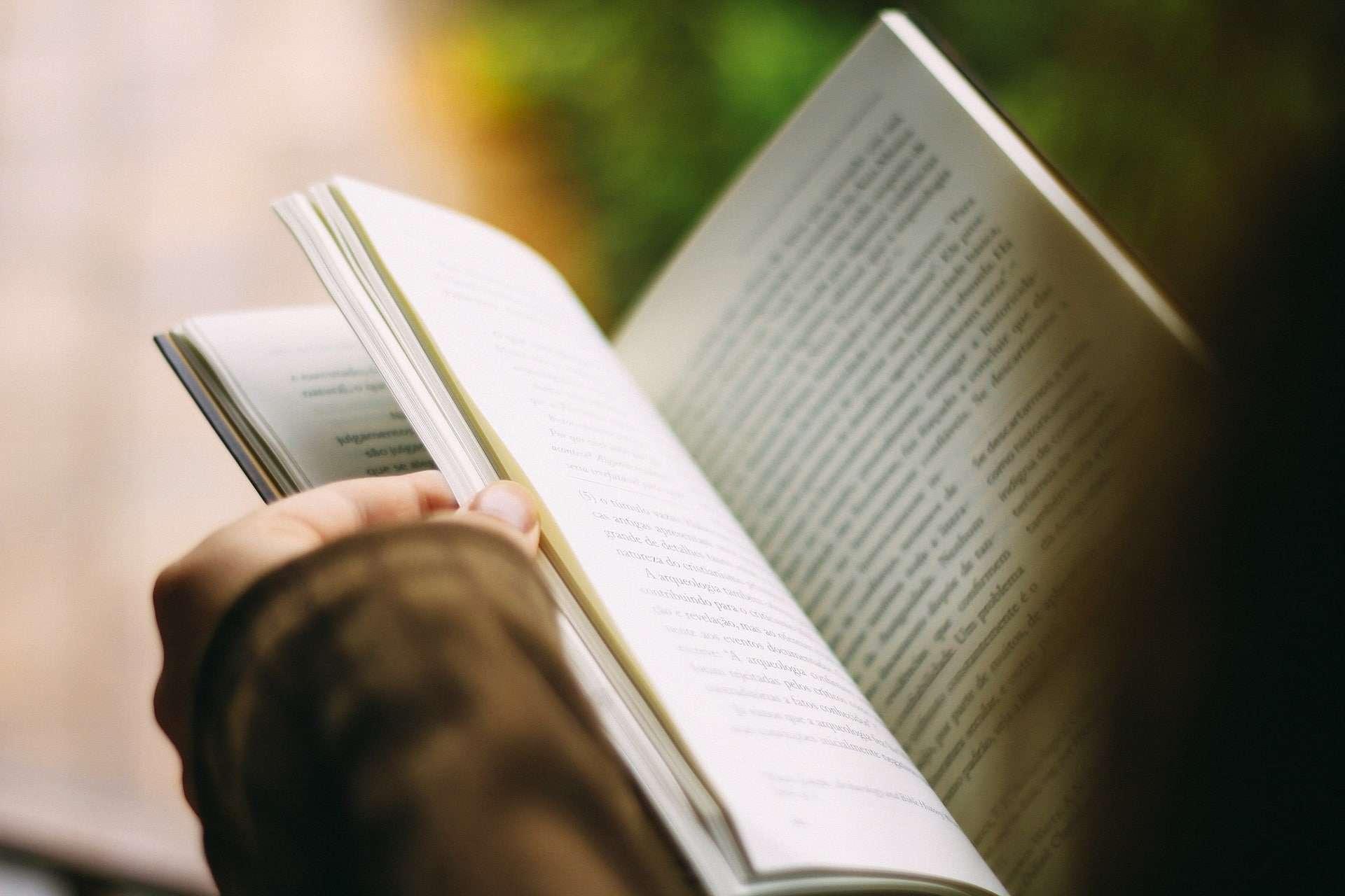 Person flipping through a book