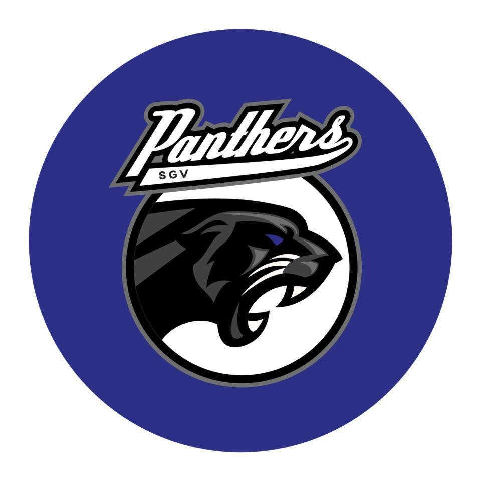 Logo with black panther