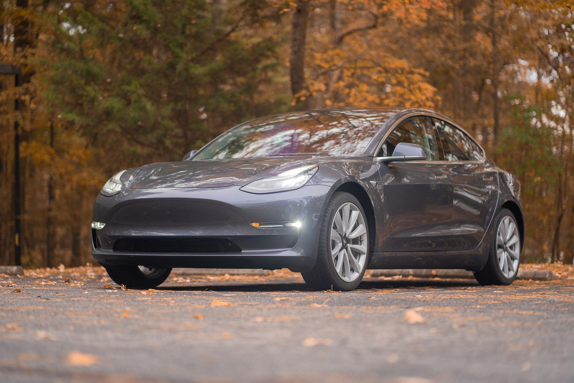 Grey Tesla driving on a road surrounded by trees in the Fall.
